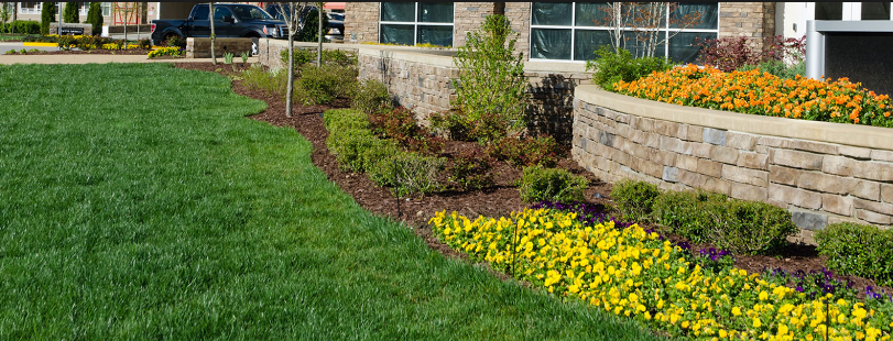 Tips To Hire Commercial Landscaping Companies